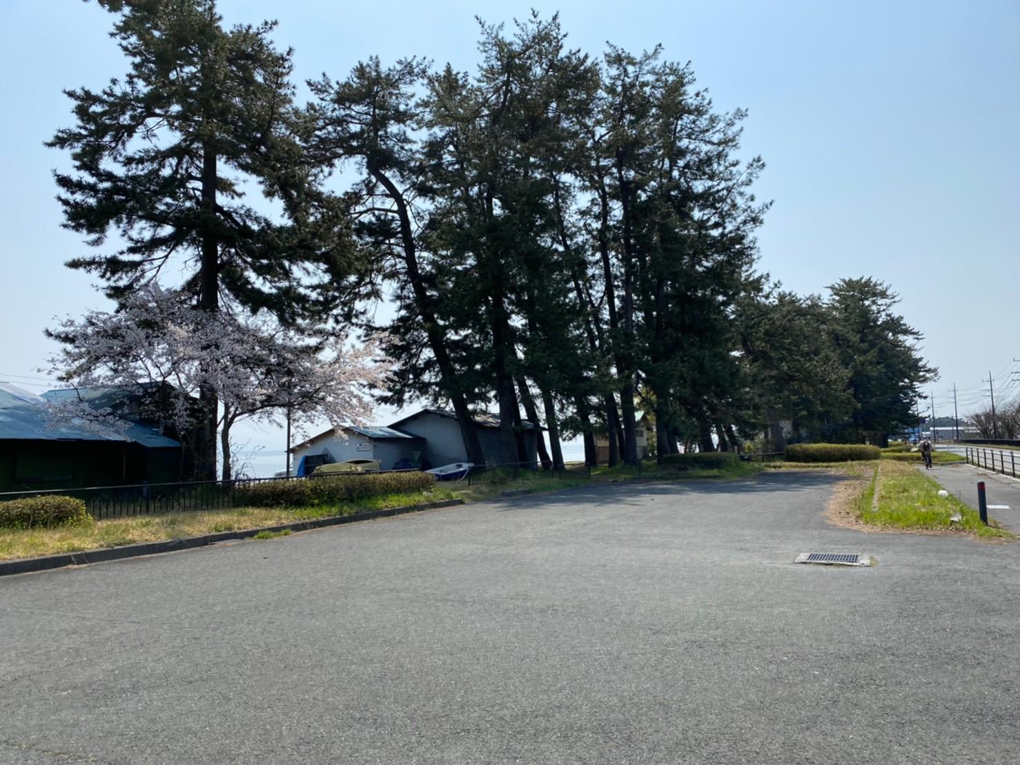 【高島市】『今津浜水泳場』のアウトドア情報