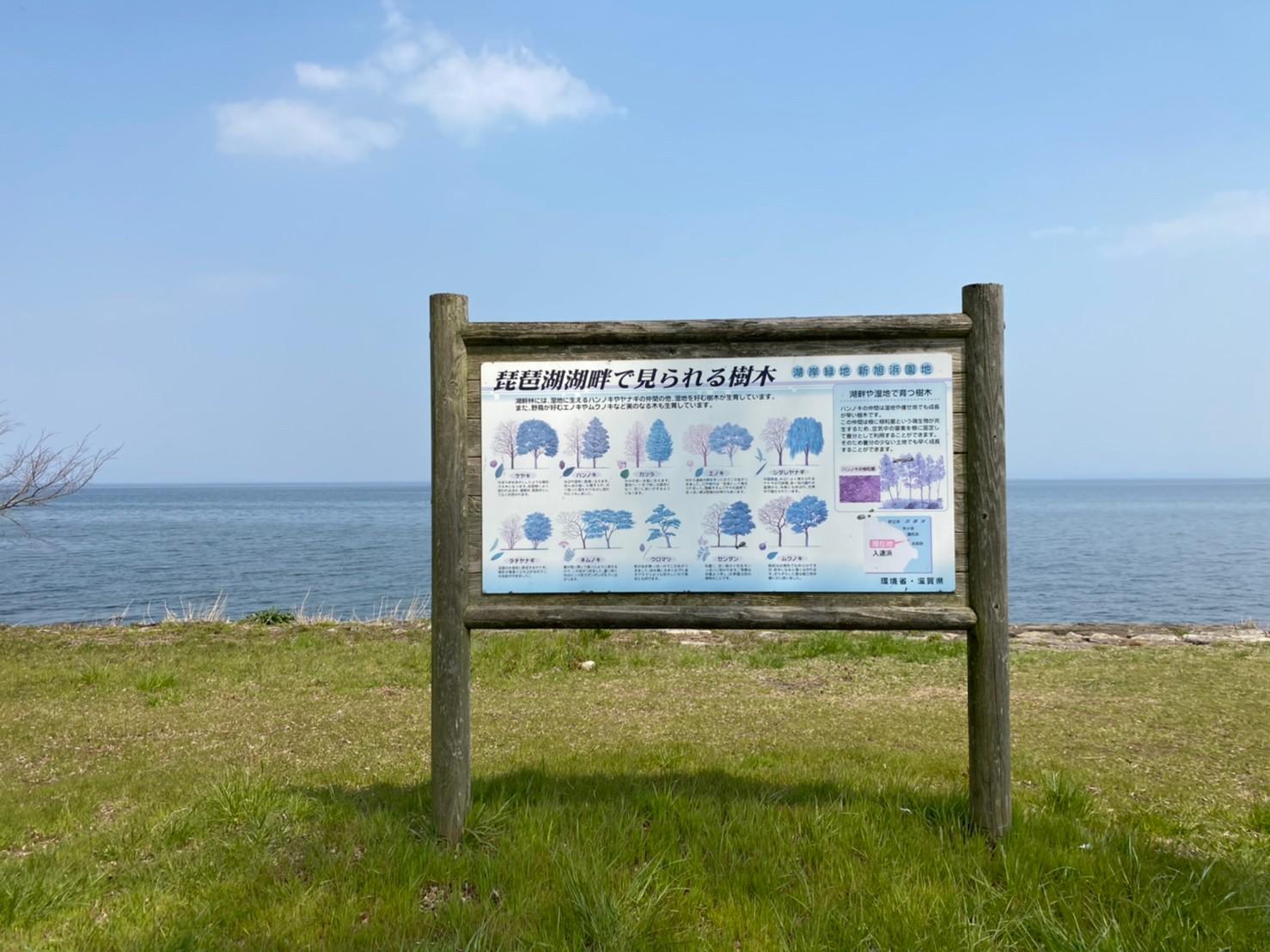 【高島市】『入道浜』のアウトドア情報(駐車場・トイレ)