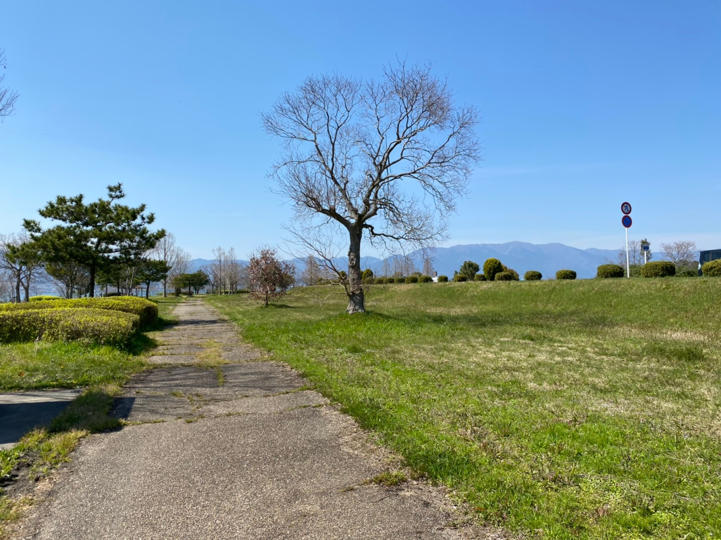 【守山市】『湖岸緑地 木浜-1』のアウトドア情報