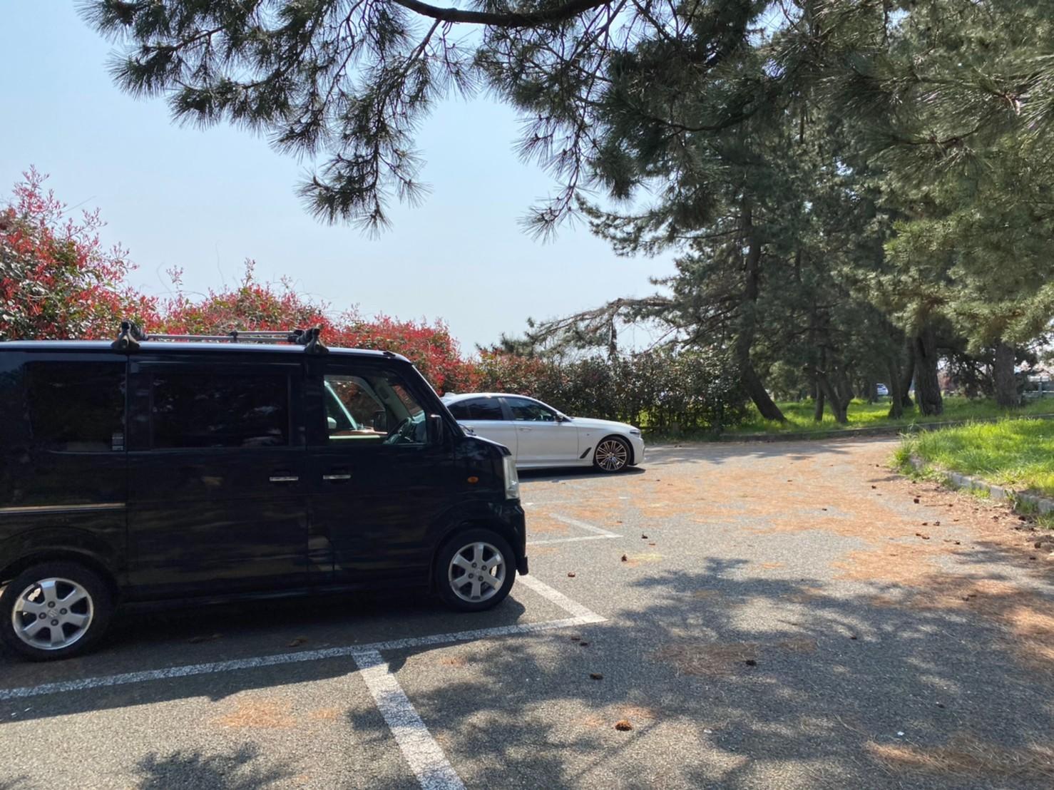 【高島市】『桂浜園地:かつらはまえんち』のアウトドア情報
