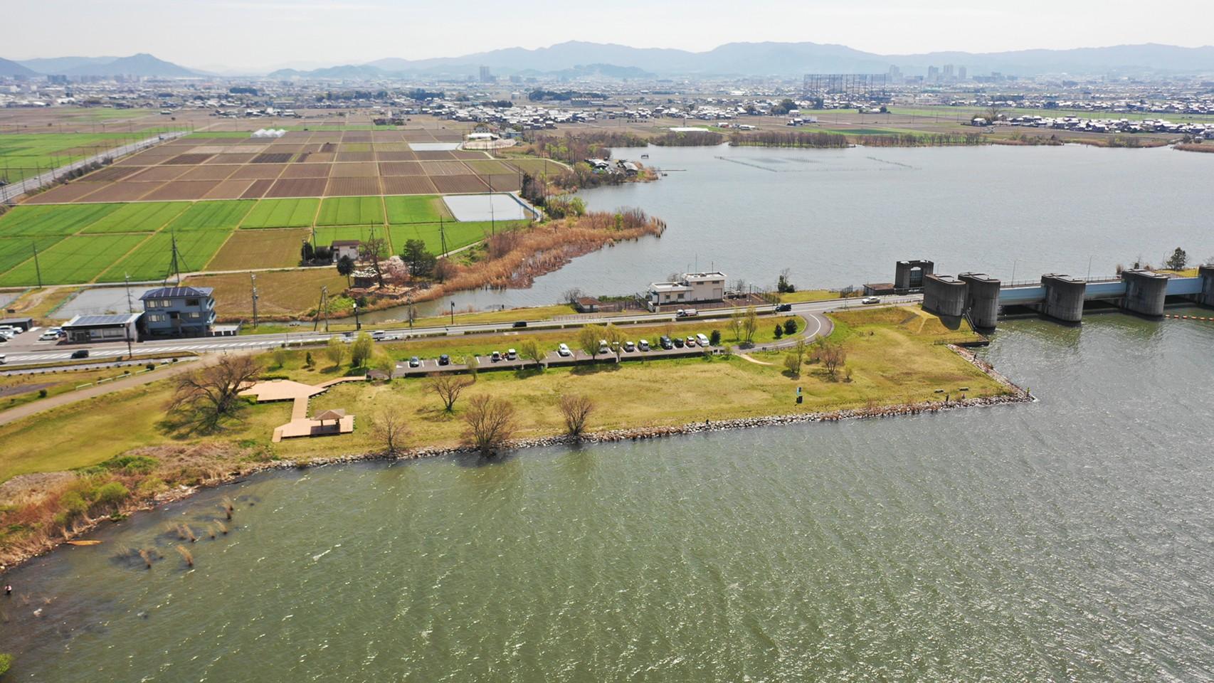 【草津市】『湖岸緑地 津田江-3』のアウトドア情報