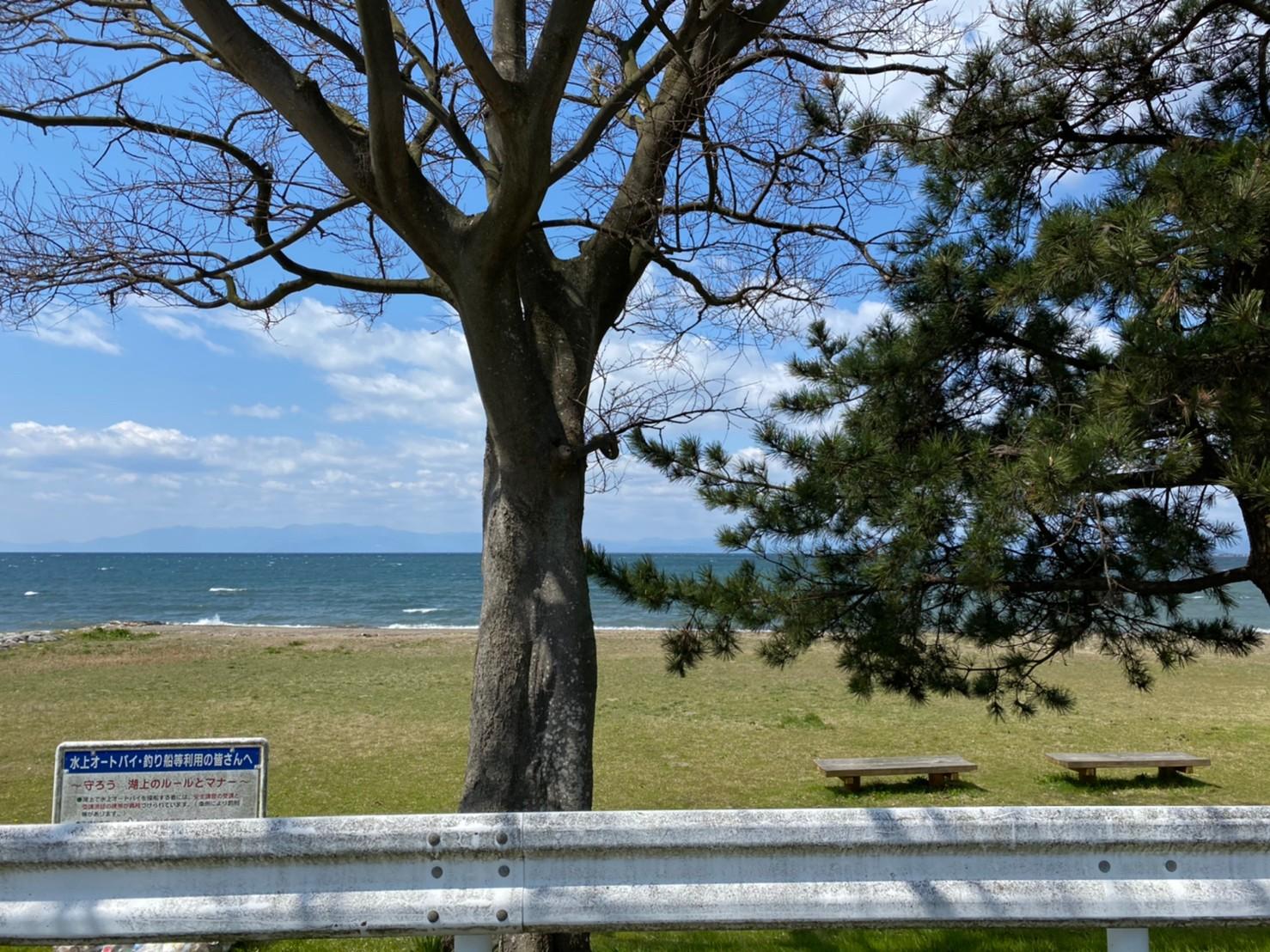 【長浜市】『湖岸緑地 さいかち浜』のアウトドア
