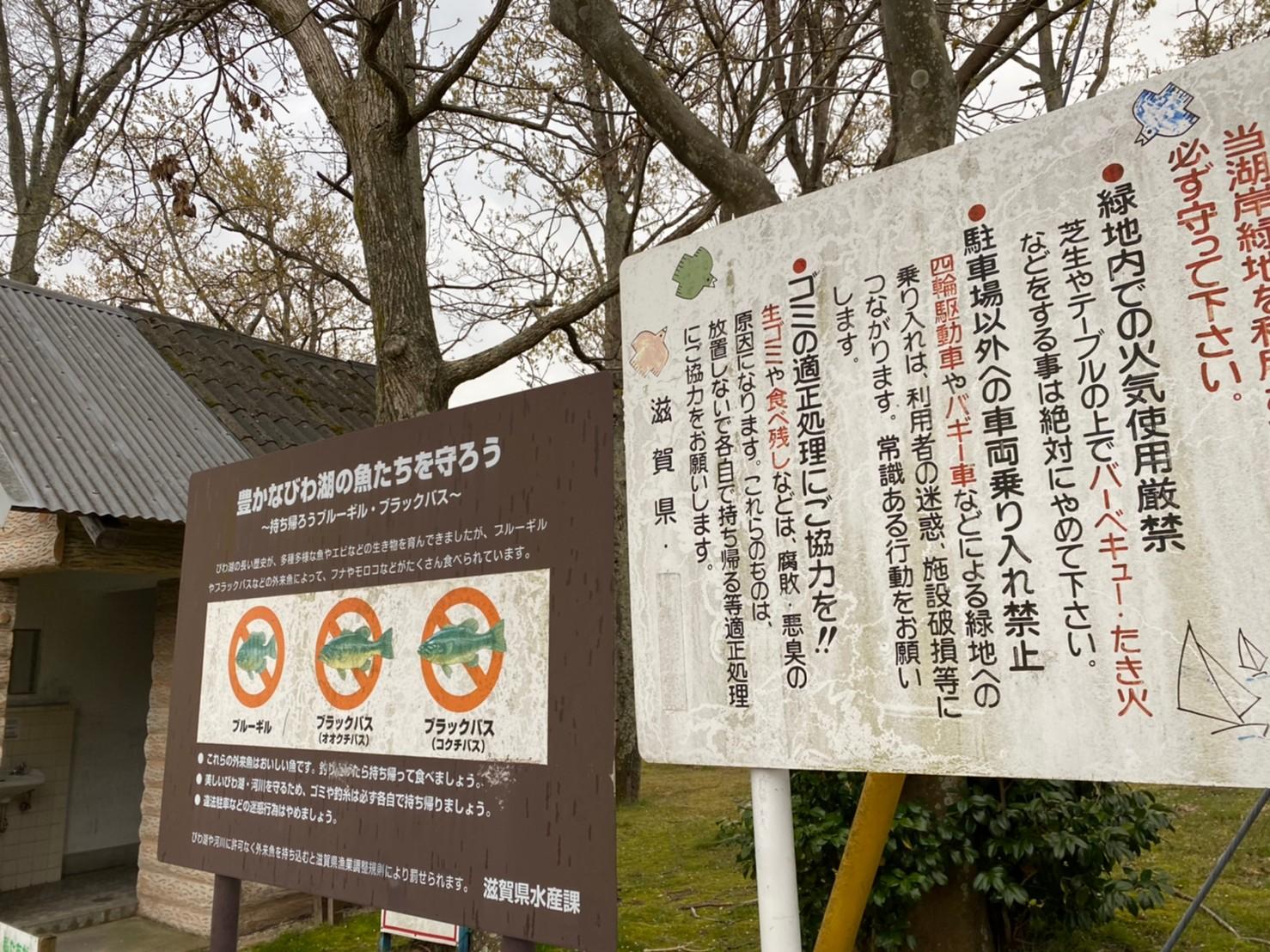 【大津市】『木戸湖岸緑地』のアウトドア情報(駐車場・トイレ・釣り)