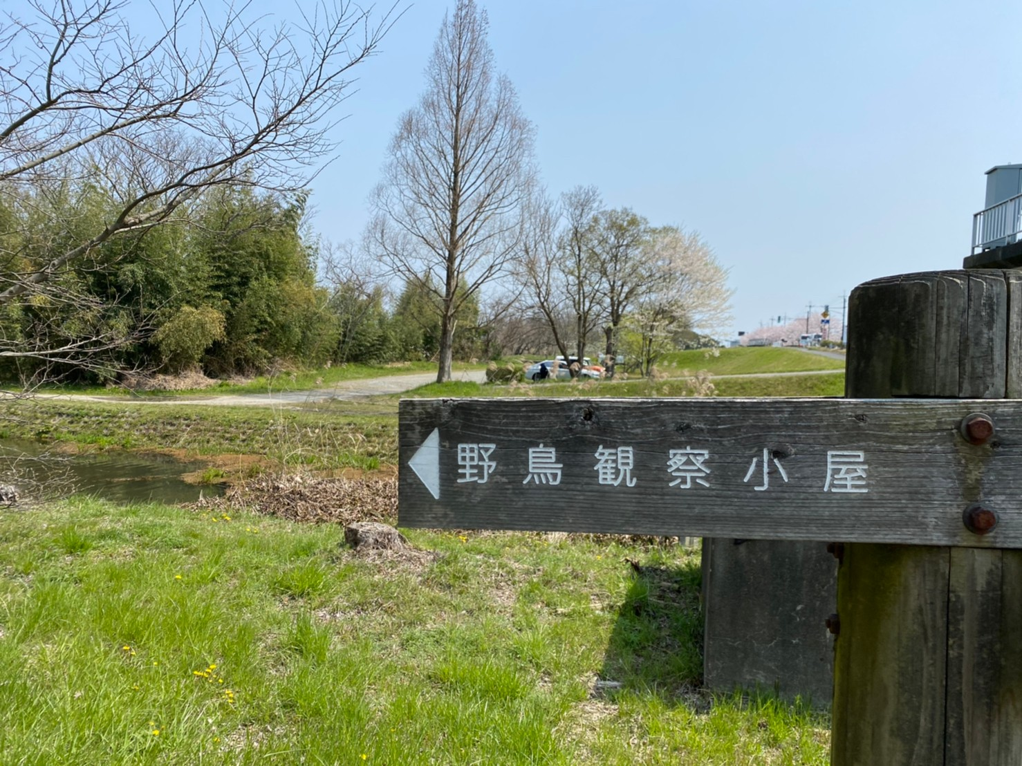 【高島市】『角野浜 湖岸公園』のアウトドア情報