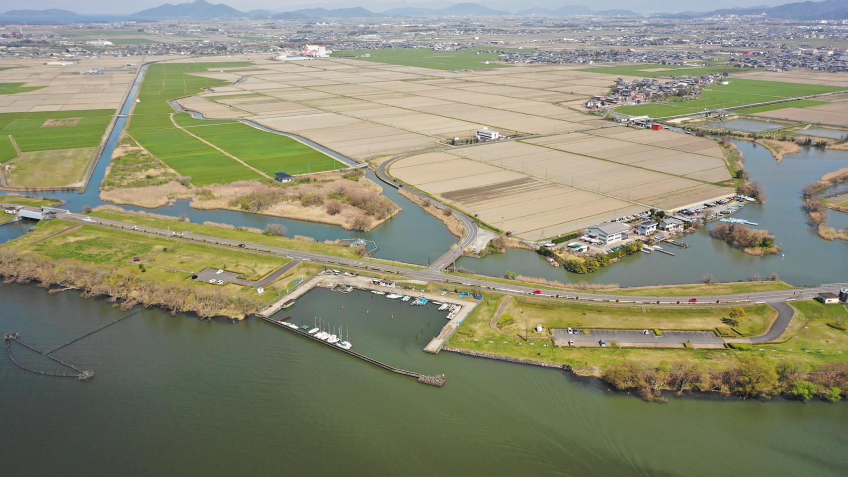 【守山市】『湖岸緑地 赤野井-3(南側)』のアウトドア情報