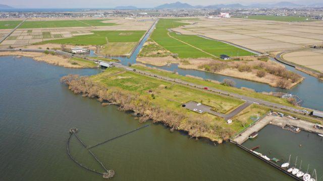 【守山市】『湖岸緑地 赤野井-3(北側)』のアウトドア情報