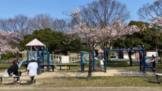 【大津市】『唐橋公園』のアウトドア情報(駐車場・トイレ・釣り)