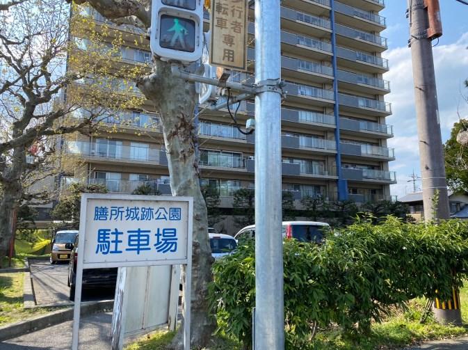【桜の名所】『大津市 膳所城跡公園』アウトドア情報(駐車場・トイレ)