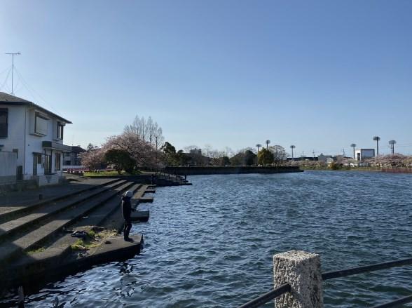 【国宝・重要文化財】『彦根城』観光ガイド(駐車場・トイレ・釣り場所)