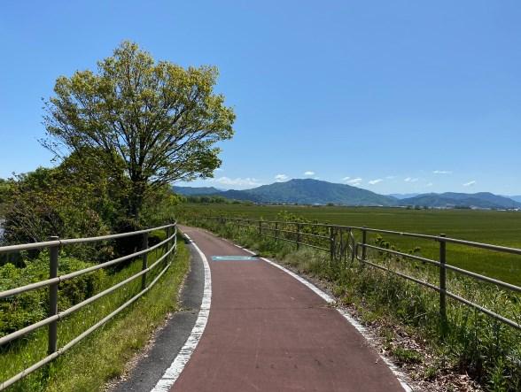 【滋賀県近江八幡市】『西の湖園地』の魅力を22枚の写真で紹介