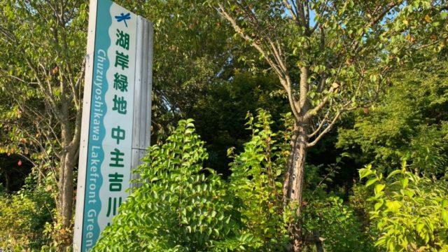 【野洲市】『湖岸緑地 中主吉川公園駐車場』攻略ガイド(キャンプ・BBQ・アクセス・駐車場・トイレ)
